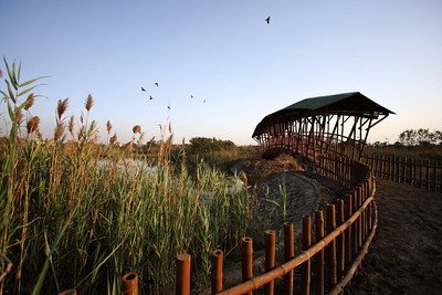 Yamuna Biodiversity Park